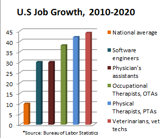 Career in demand 2013